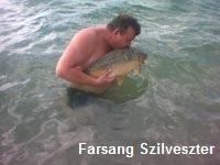Farsang Szilveszter